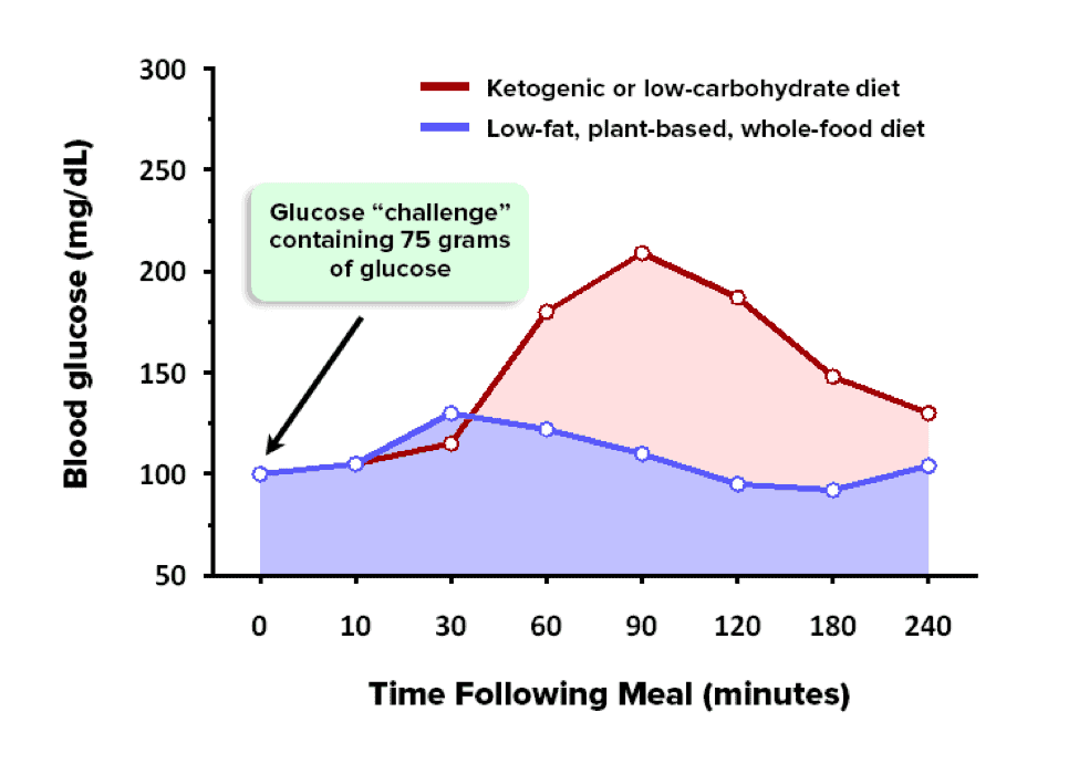 Ketosis And The Ketogenic Diet Debunking 7 Misleading Statements